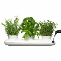 Sagaform's Trio Herb Pot - Contemporary Way to Grow Fresh ...
