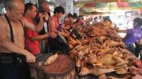 25 Orang di Simalungun Muntah-Muntah Usai Konsumsi Daging Anjing
