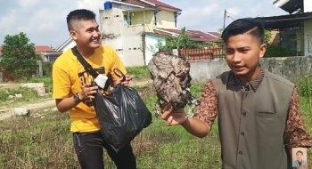 Prank Daging Kurban Isi Sampah, Youtuber Edo Putra Diamankan Polisi