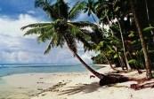 Ajang Video Tourism Contest Bakal Gairahkan Wisata di Nias Pesisir