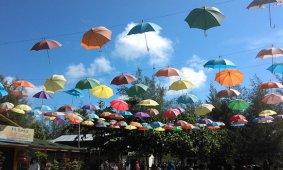 Prakiraan Cuaca Hari Ini, Kota Medan Cerah Berawan