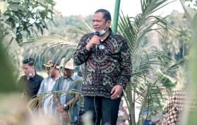 Fantastis! Wali Kota Padangsidimpuan Miliki Tanah Hingga 1.121.514 m2, Tersebar di 5 Kab/Kota