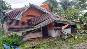 Kondisi rumah Sumiati usai tertimpa pohon.