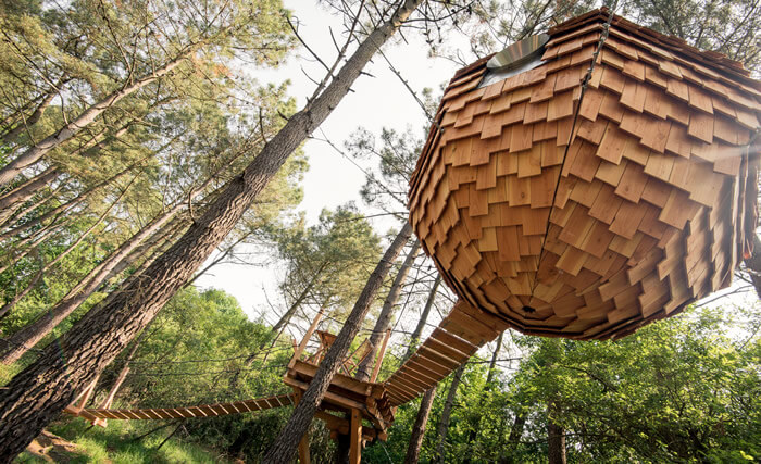 Lov nid nid perch dans les arbres nid suspendu  Bretagne  Morbihan