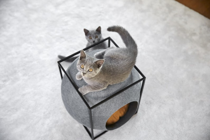 Mobilier-chat-design-Meyou-Paris-panier-4