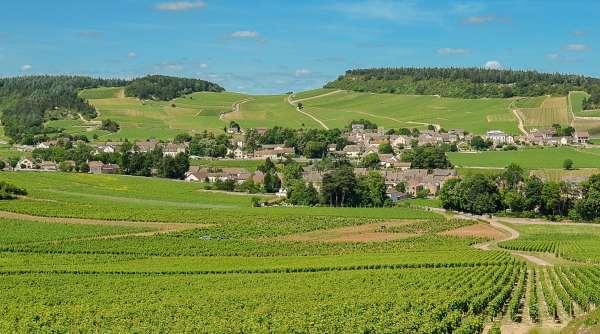 Le village de Mercurey au coeur du vignoble chalonnais © Clement Bonvalot