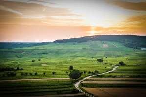 Dijon-Maranges, la voie des 1247 climats de Bourgogne