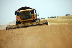 Moissons: sale temps pour les blés de la Vingeanne!