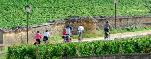 Bourgogne: mi-figue, mi-raisin le tourisme