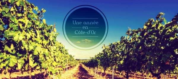 www.une-annee-en-cote-dor.com