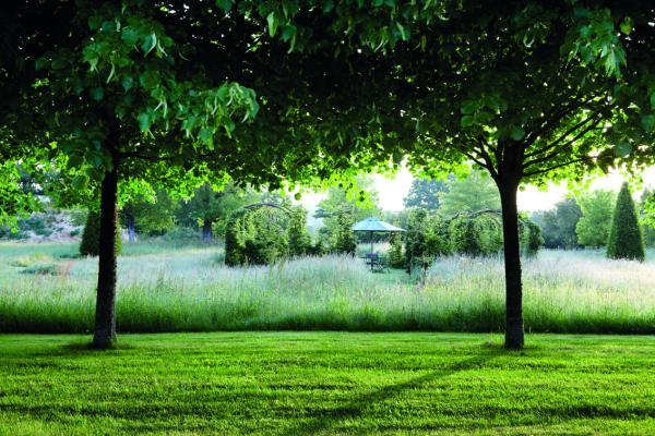 jardin_la_borde-2 copie
