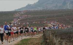 Et si on lançait un marathon entre Dijon et Beaune?