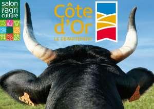Jolie vitrine pour la Côte-d'Or au Salon de l'Agriculture