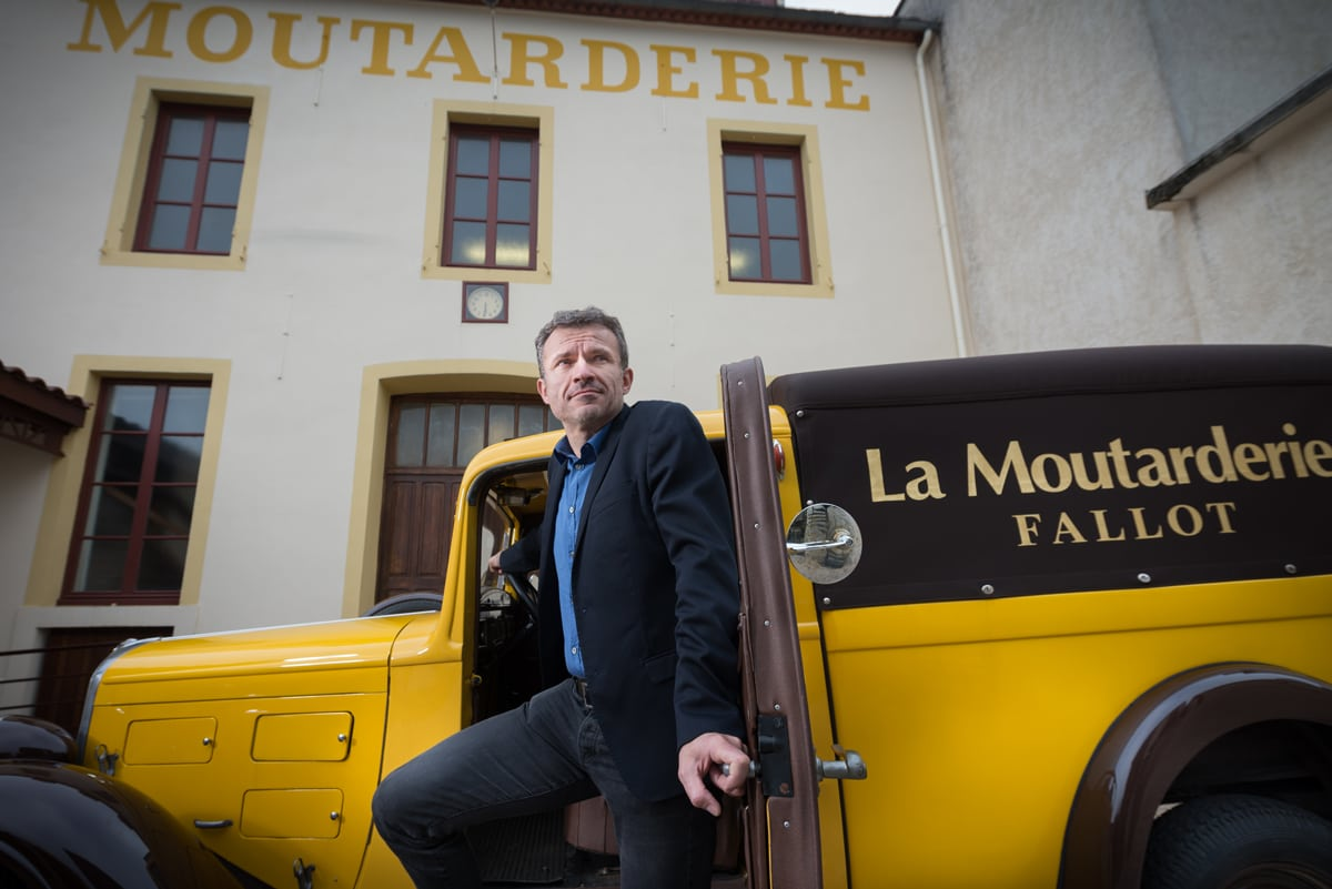 Fallot : mustard  in the noise !