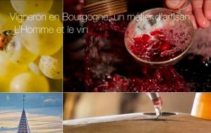 Les news des vins de Bourgogne : des hommes et du vin