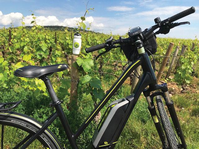 Un des modèles de vélo électrique proposé par Bourgogne randonnées au coeur des vignes