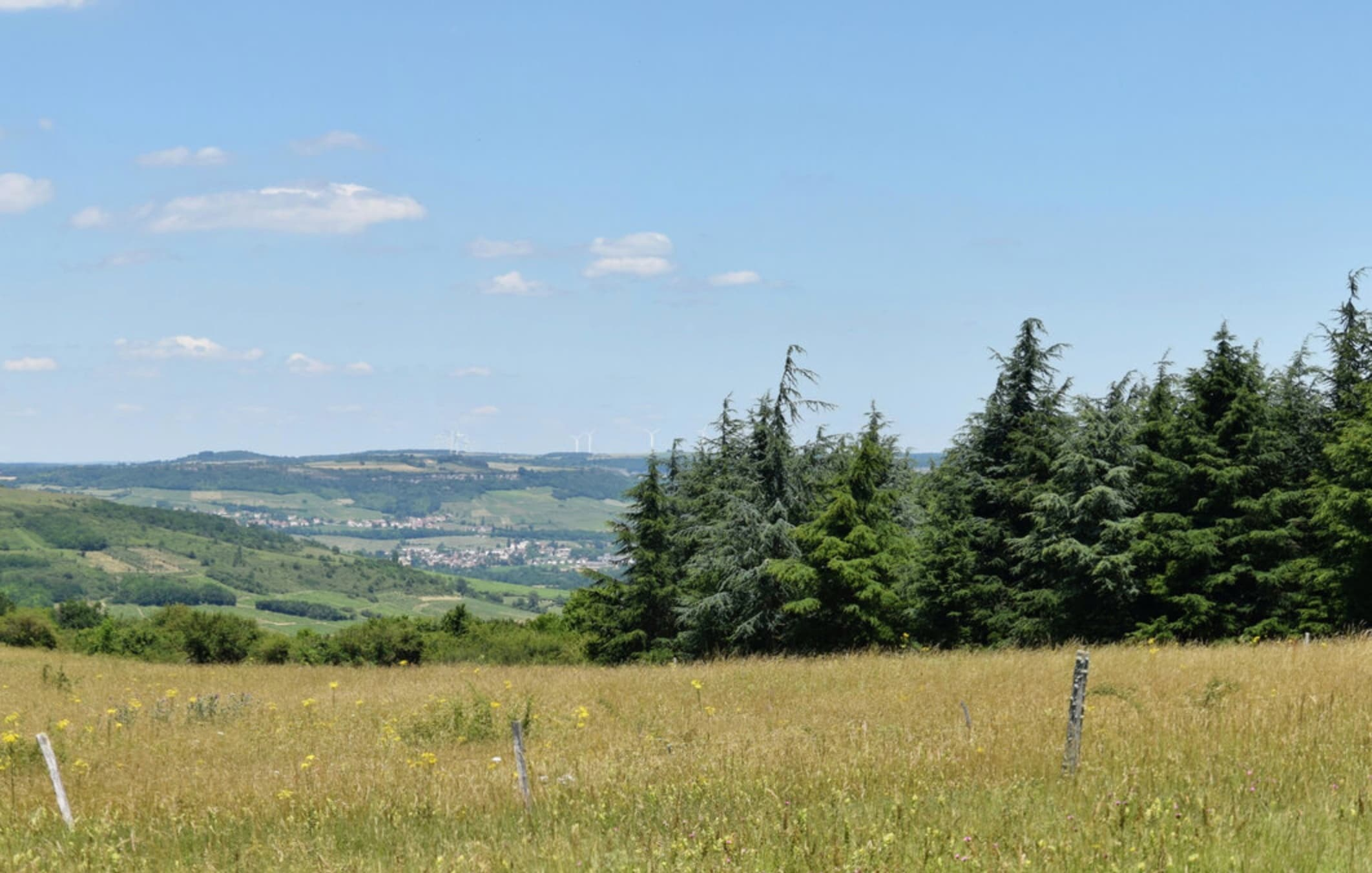 Le Parc Chaumes des Communes, vu depuis le sommet du mont de Rome Château