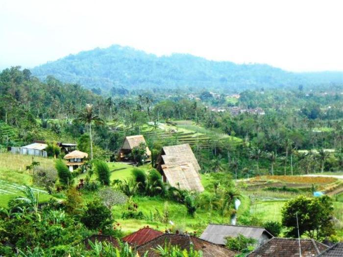 Tanah di Tabanan Bali dijual