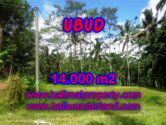Jual tanah di Ubud view alami dekat sungai di Ubud Payangan Bali