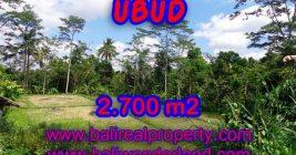 Jual tanah di Bali murah view sawah dan hutan di Ubud Tampak Siring