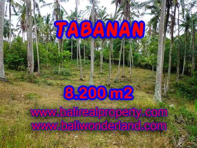 DIJUAL TANAH MURAH DI TABANAN BALI TJTB142