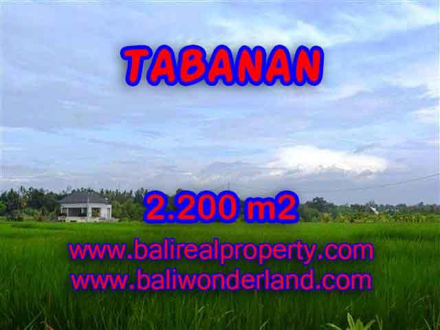 TANAH DI TABANAN MURAH TJTB097 - INVESTASI PROPERTY DI BALI