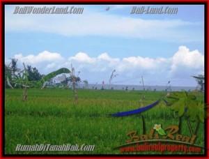 JUAL TANAH di CANGGU BALI 2.000 m2  view sawah dekat pantai