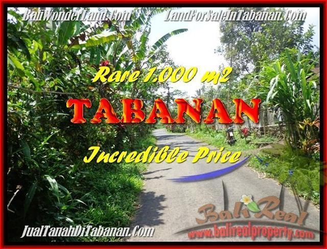 TANAH di TABANAN DIJUAL Untuk INVESTASI TJTB171