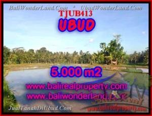 JUAL MURAH TANAH di UBUD 5,000 m2  view sawah dan gunung