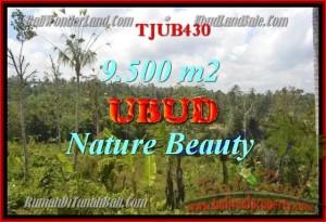 TANAH DIJUAL di UBUD TJUB430