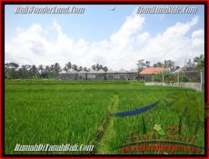 TANAH MURAH di UBUD 1.000 m2 View sawah link villa