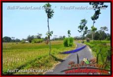 TJUB456 - JUAL TANAH MURAH DI UBUD - LAND FOR SALE IN BALI 18