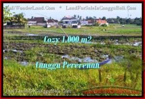TANAH MURAH  di CANGGU BALI DIJUAL 10 Are View sawah link villa