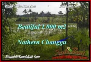 TANAH di CANGGU DIJUAL MURAH 1,000 m2 di Canggu Batu Bolong