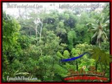 TANAH di UBUD BALI DIJUAL MURAH 6 Are di Ubud Tampak Siring