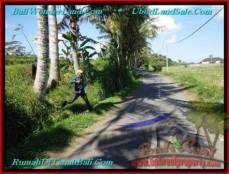 DIJUAL TANAH di UBUD 3 Are di Sentral Ubud