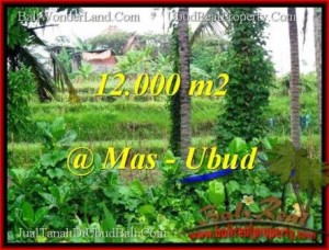 TANAH di UBUD BALI DIJUAL MURAH 12,000 m2  View sawah dan sungai
