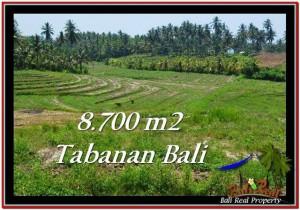 INVESTASI PROPERTY, JUAL TANAH MURAH di TABANAN BALI TJTB233