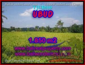 TANAH di UBUD DIJUAL 18.5 Are di Ubud Tegalalang