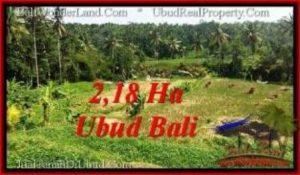 TANAH di UBUD DIJUAL MURAH 218 Are di Sentral Ubud