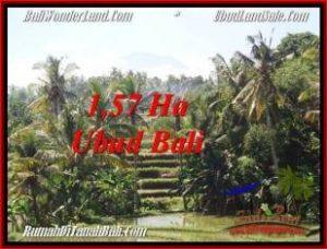 JUAL MURAH TANAH di UBUD BALI 157 Are View Sawah, gunung dan sungai