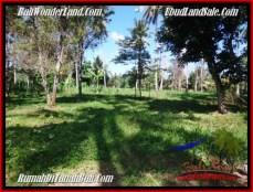 JUAL TANAH MURAH di UBUD 157 Are View Sawah, gunung dan sungai
