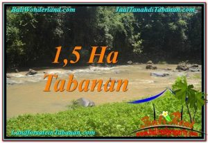 TANAH di TABANAN BALI DIJUAL MURAH 150 Are View Sawah dan Sungai