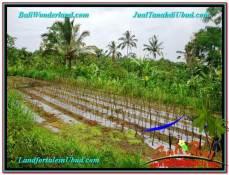 TANAH MURAH DIJUAL di UBUD BALI 1,200 m2 di Ubud Payangan