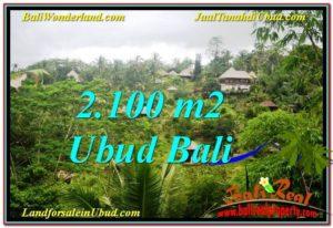 JUAL TANAH di UBUD 2,100 m2  View Tebing dan Sungai