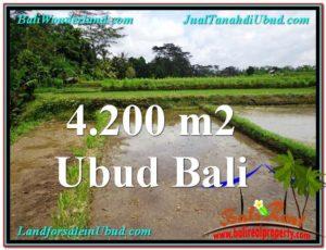 DIJUAL MURAH TANAH di UBUD 42 Are di Ubud Tampak Siring