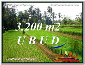 JUAL TANAH di UBUD BALI 3,200 m2  View Sawah link Villa