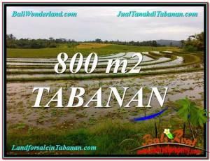 INVESTASI PROPERTY, JUAL MURAH TANAH di TABANAN BALI TJTB324