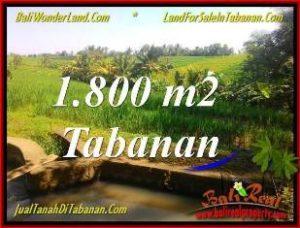 TANAH MURAH DIJUAL di TABANAN BALI TJTB338