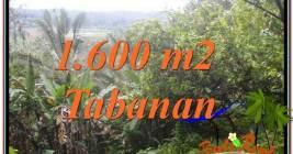 TANAH MURAH di TABANAN BALI DIJUAL 16 Are di Tabanan Selemadeg